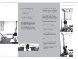 Pr ctica de iyengar yoga con una silla chin mudra sas for Chaise yoga iyengar