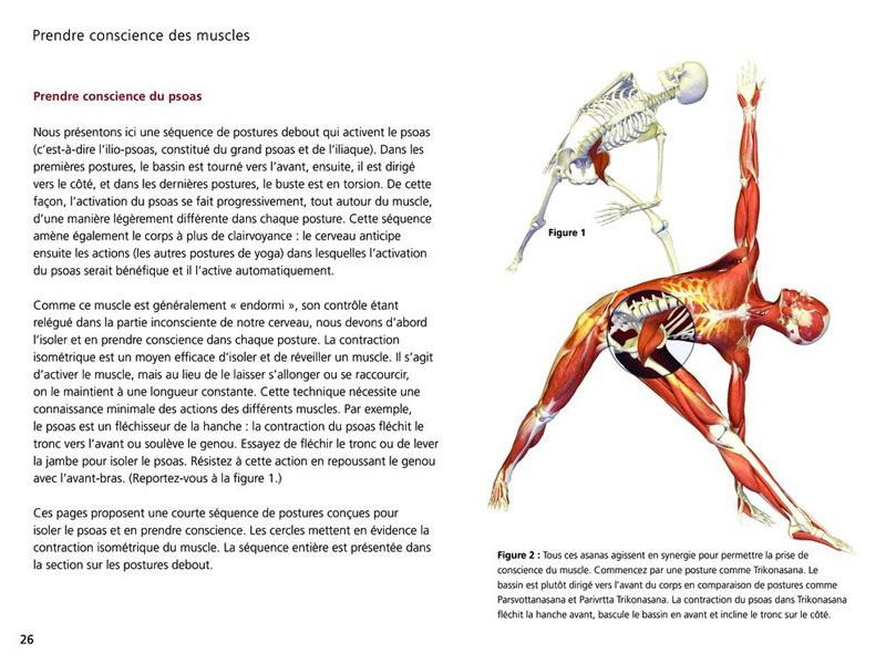 Anatomía Yoga - Las posturas | Chin Mudra SAS | Francia | Accesorios ...