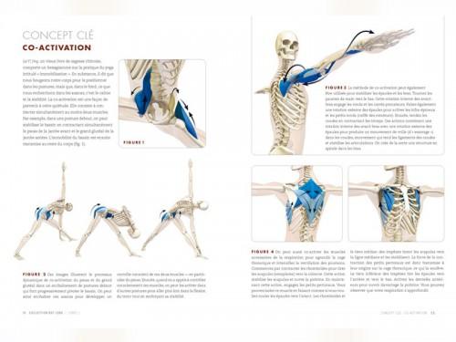 Anatomie des Postures Debout et du Vinyasa Ray Long - Livres de Yoga ... 1723fe7f368